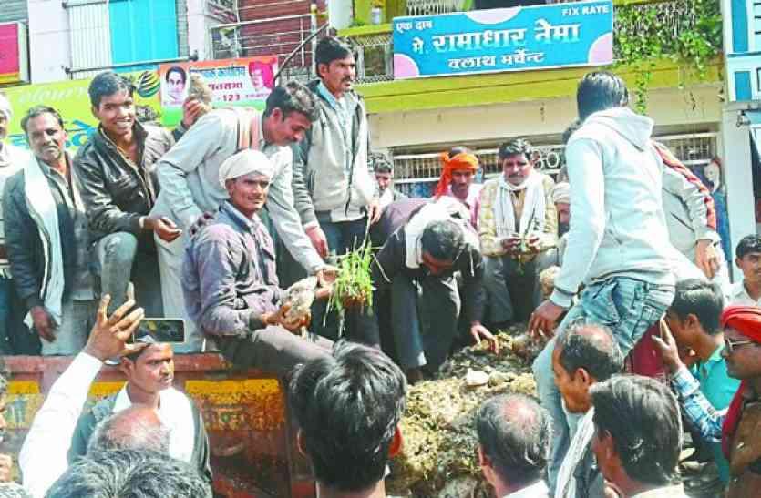 ट्रॉली में खराब हुई फसल लेकर पहुंचे किसान