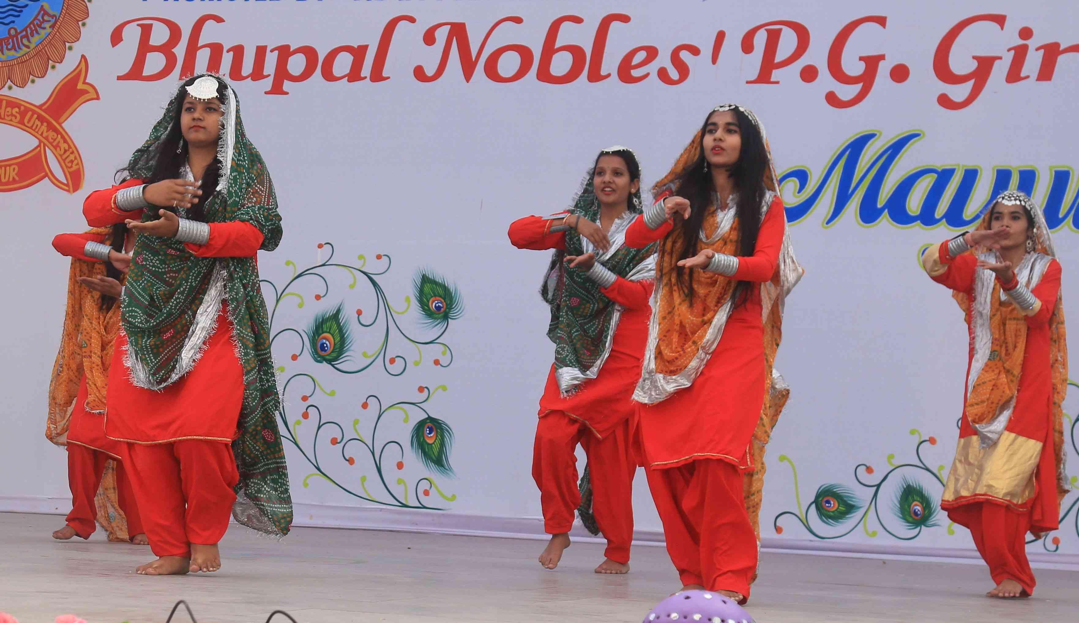bnpg college udaipur