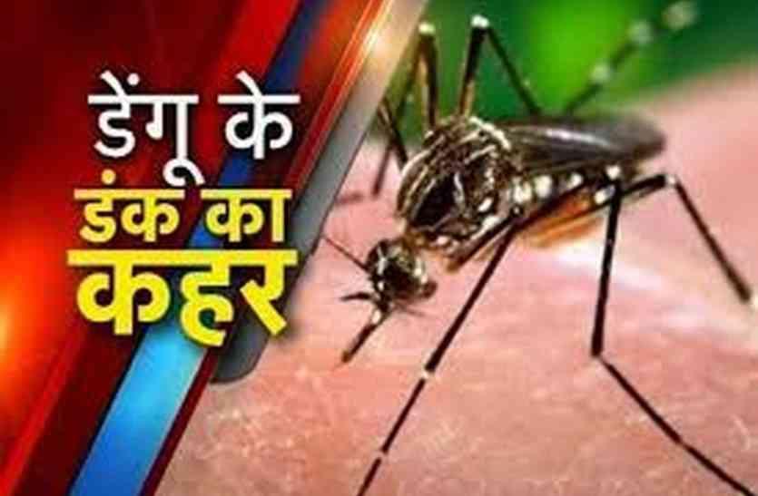 अलवर में तेजी से बढ़ रहे डेंगु के मरीज, रखें यह सावधानी