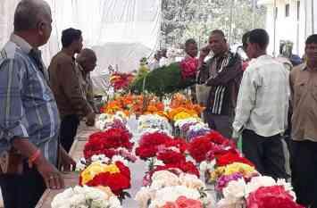 video : फतहसागर के बाद अब गुलजार हुआ नगरनिगम, रंग-बिरंगे फूलों की बिखरी महक