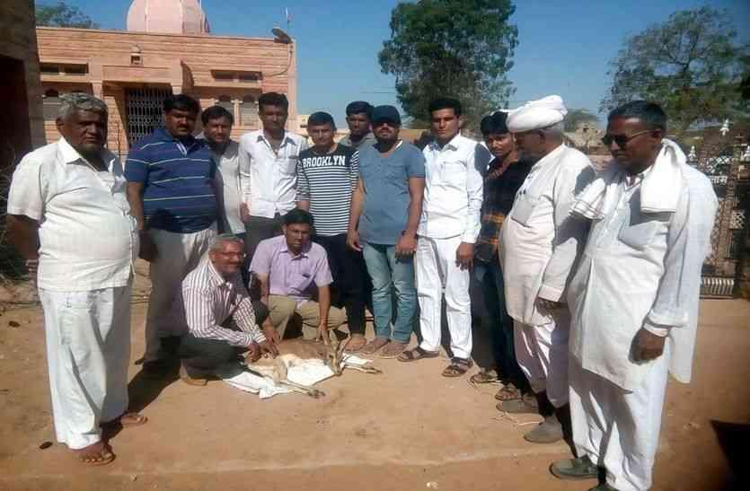 JAISALMER NEWS- तो क्या जैसलमेर के इस गांव में दीवारें करती है इलाज, उपस्वास्थ्य केन्द्र पर लगा रहता है ताला?