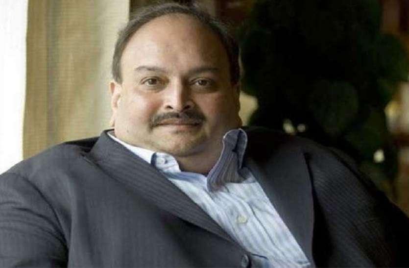 चौकसी के वकील को टिकट देने पर घिरी कांग्रेस