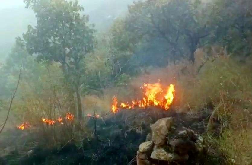 पिछले सालों की तुलना में चार गुना बढ़ीं जंगल में आग