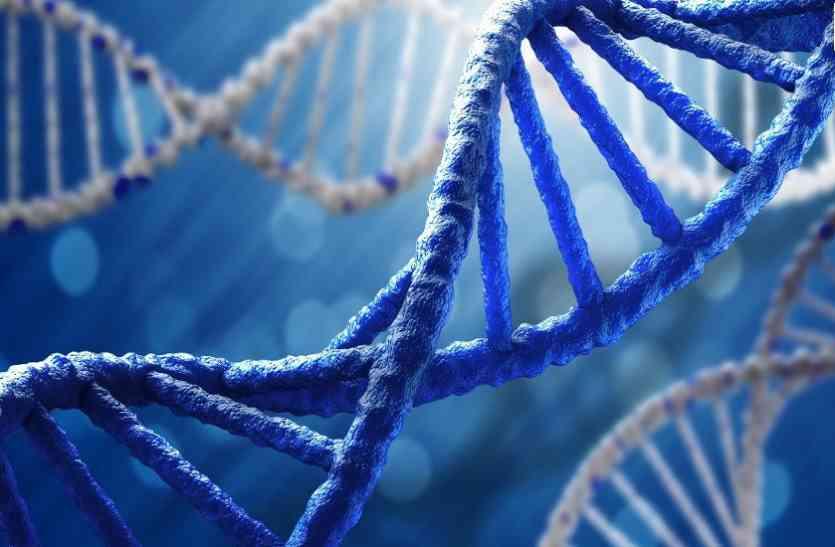 रिसर्च में हुआ खुलासा, डीएनए में छिपा होता है बुद्धिमता का कोड़