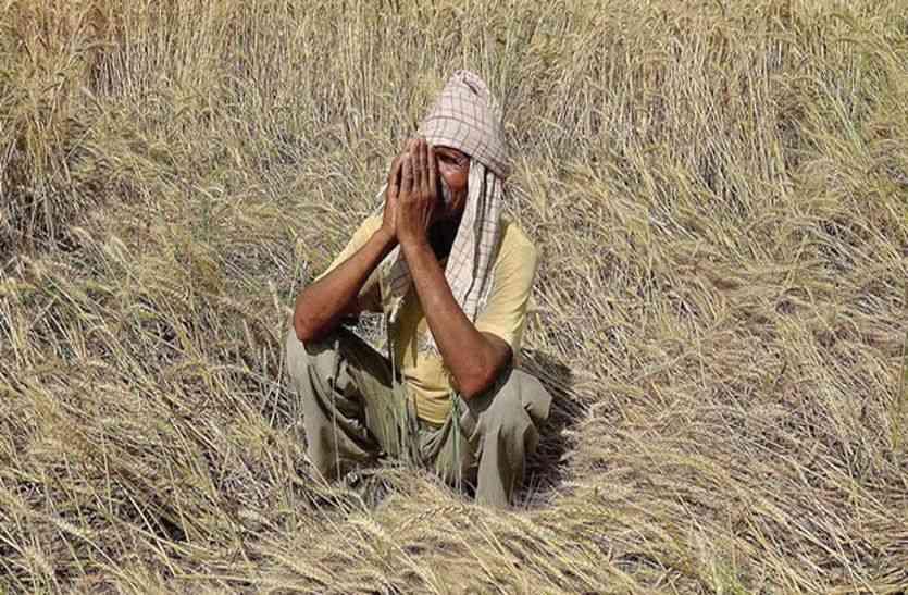 सीकर में सहकारी बैंकों ने हजार खाताधारकों से वसूले 30 करोड़ रुपए , किसानों की कर्जमाफी की सरकारी घोषणा सिर्फ खोखली