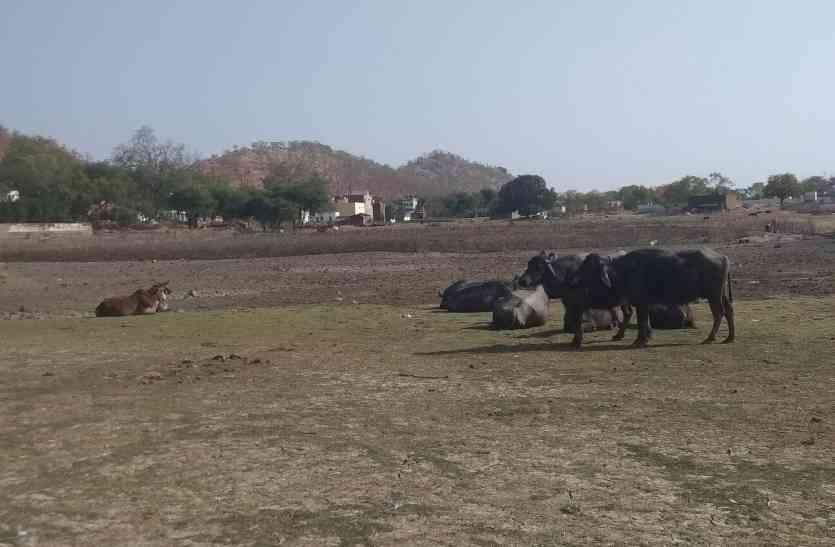 water crisis चंदेरा में गर्मी के साथ जल संकट ने दी दस्तक