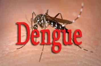 मौसम बदलने के बाद भी इसलिए मिल रहे हैं डेंगू-चिकनगुनिया के मरीज