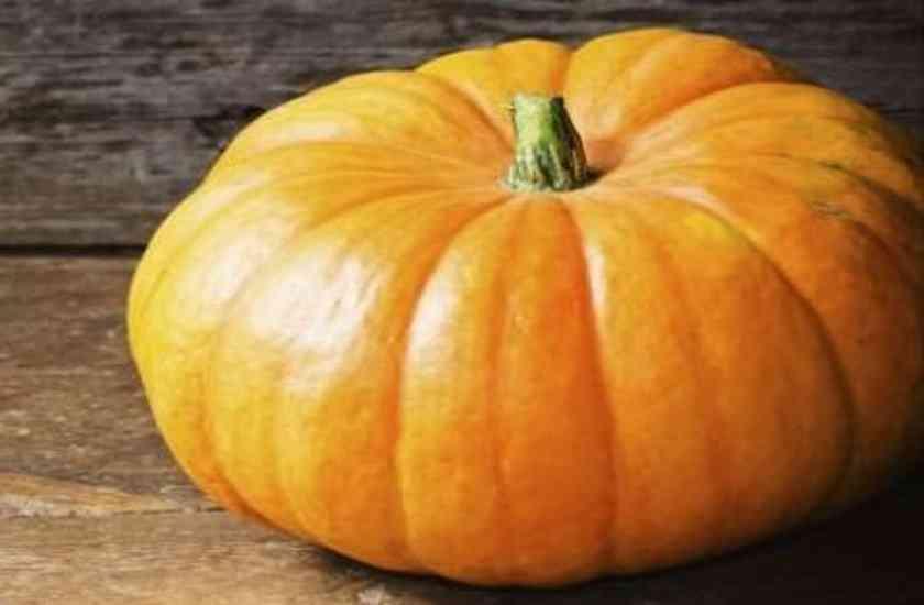 Pumpkin,nari