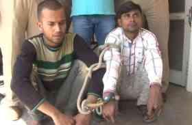 ट्रेन से पार्सल लूटने वाले दबोचे, आरपीएफ जवान भी संदेह के घेरे में