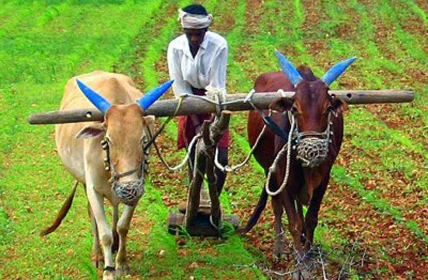 हुआ बस एक क्लिक और सैकड़ों किसानों को मिल गए लाखों रुपए, जानिये कैसे