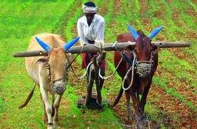 अन्नदाता को ऐसे मिलेगा फसल की खेती के साथ पौधों की खेती का लाभ