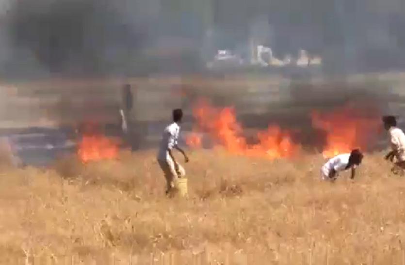 खेतों में नरवाई जलाने से पर्यावरण को नुकसान