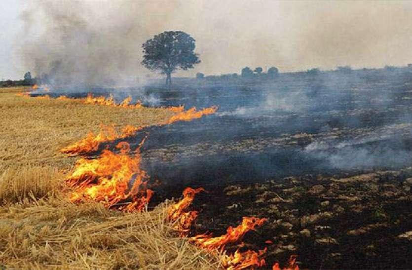 खेत में फसल का अवशेष जलाने वालों पर लगेगा जुर्माना