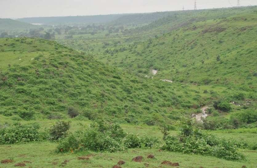 प्रदेश में वनाच्छादित क्षेत्र में उदयपुर के बाद प्रतापगढ़ जिला दूसरे स्थान पर