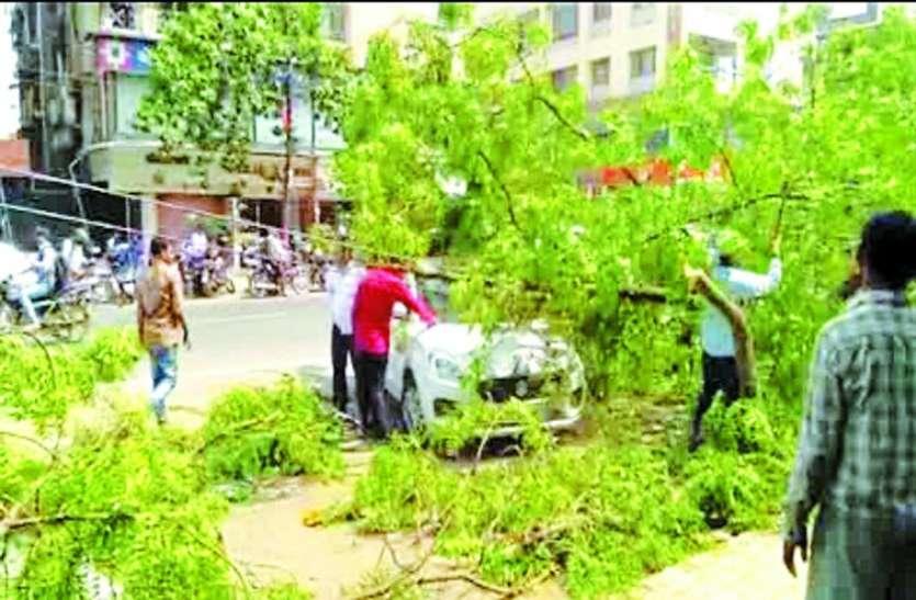 पेड़ गिरने से कार क्षतिग्रस्त, बिजली गुल