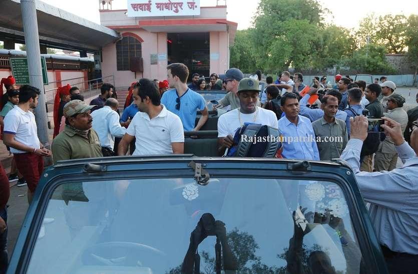 क्रिकेटरों ने देखी बाघों की अठखेलियां,राजस्थान रॉयल्स के खिलाडिय़ों ने किया पार्क भ्रमण