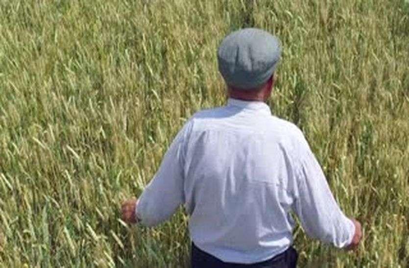 खेत में गये इस शख्स ने कभी सोचा भी नही था कि वो कभी घर वापस लौटकर नही आयेगा