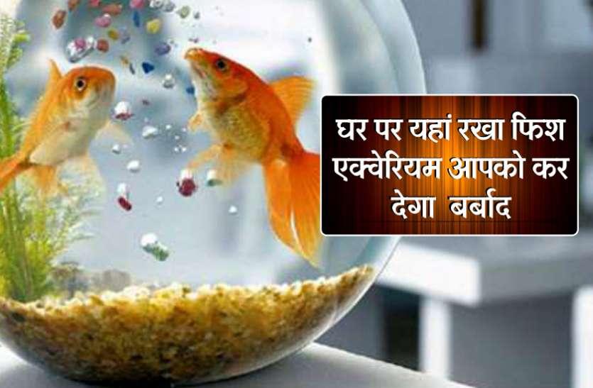 Vastu Benefits Of Fish Aquarium At Home Jabalpur News In Hindi