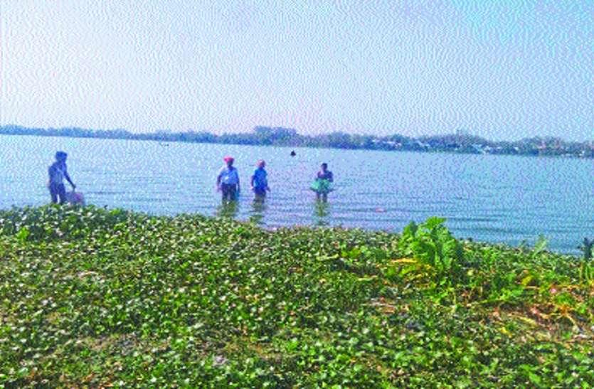 तालाब में अपने आप उतरा रही थी मछलियां, देखकर दंग रह गए लोग