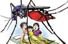 आठ वर्ष में मलेरिया के 1.42 लाख मरीज,13 की मौत
