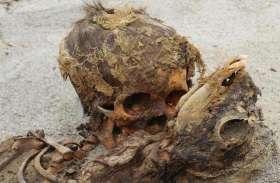 550 सालों से दफ़्न राज का हुआ पर्दाफाश, खुदाई में मिले 140 बच्चों के अवशेष