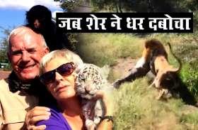 Viral video : सफारी पार्क  मालिक पर शेर ने किया हमला, तस्वीरें कर सकती हैं विचलित