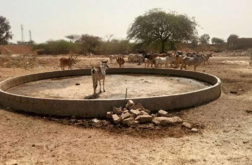 JAISALMER NEWS- भीषण गर्मी में प्यासे कंठ कौन सुने गरीब पुकार!