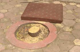 महाराष्ट्र राज्यपाल के घर से चंदन के पेड़ चोरी कर ले गए बदमाश