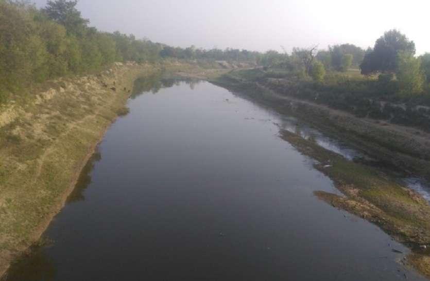 झरही नदी में भारी मात्रा में नेपाली शराब की फैक्ट्री से गिर रहा गंदा पानी