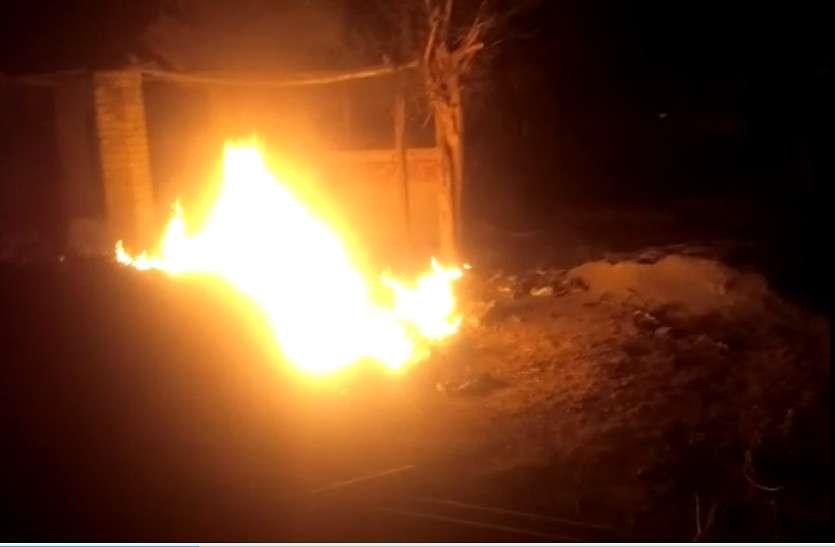 अचानक उठी आग ने सैकड़ों पेड़-पौधों को जलाकर किया खाक
