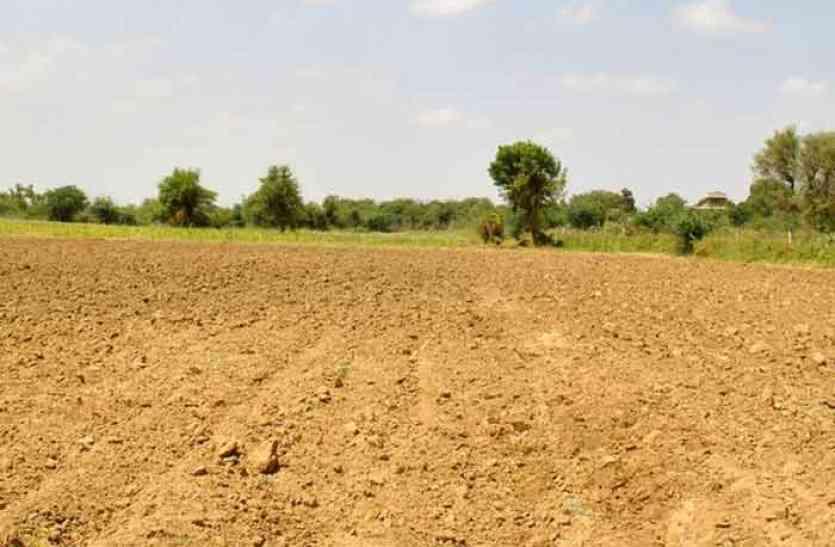 खेतों की मेढ़ पर छाएगी हरीयाली, मिलेगा अनुदान