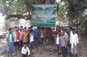 आदिवासियों ने गांवों में बोर्ड लगाकर लिखा- अनुसूचित क्षेत्र, शासन का दखल मना है!