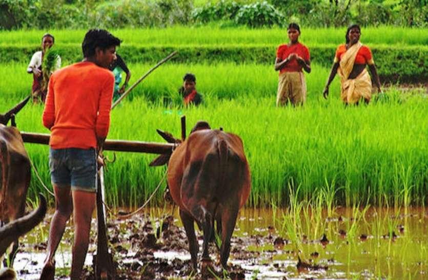 किसानों की आय दोगुनी करने का आखिर ढूंढ ही निकाला फार्मूला