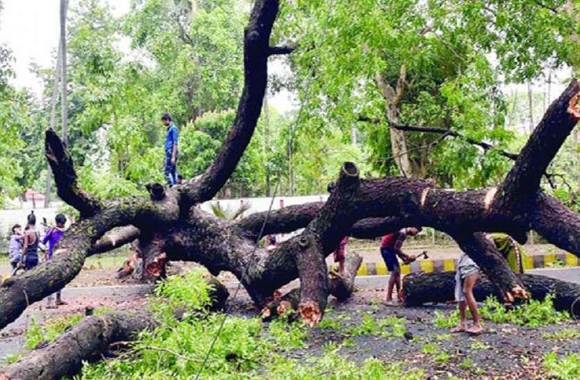 BREAKING- जौनपुर में आंधी -तूफान ने ली 3 लोगो की जान, दहशत में लोग