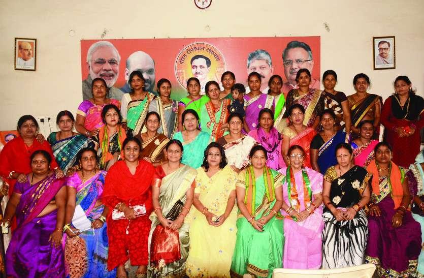 Chhattisgarh News, CM News, Korba News, Vikas Yatra, Development Journey, Dr. Raman singh, Korba news in hindi