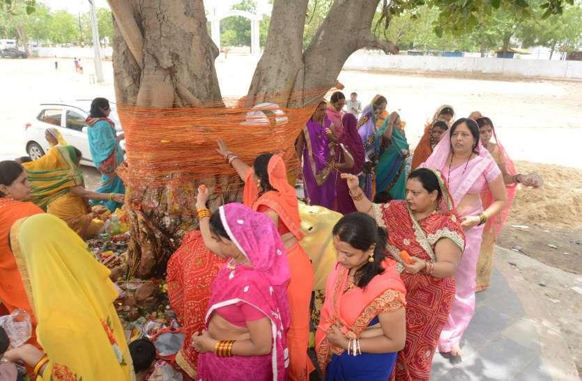 Photo Gallery : पति की दीर्घायु के लिए सुहागिनों ने की वट सावित्री की इस तरह की पूजा-अर्चना