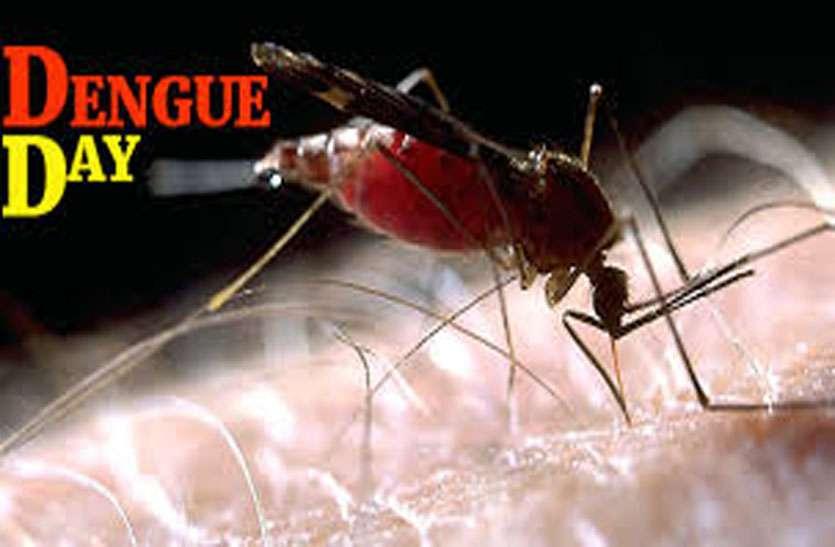 डेंगू दिवस पर विशेष: अगर दिखाई दें ये लक्षण, तो तुरंत दिखाएं डाक्टर को