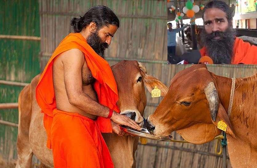 इस गाय को बाबा रामदेव जान से ज्यादा करते हैं प्रेम, कीमत 2 से 10 लाख, बताया कैसे कमा सकते हैं आप लाखों