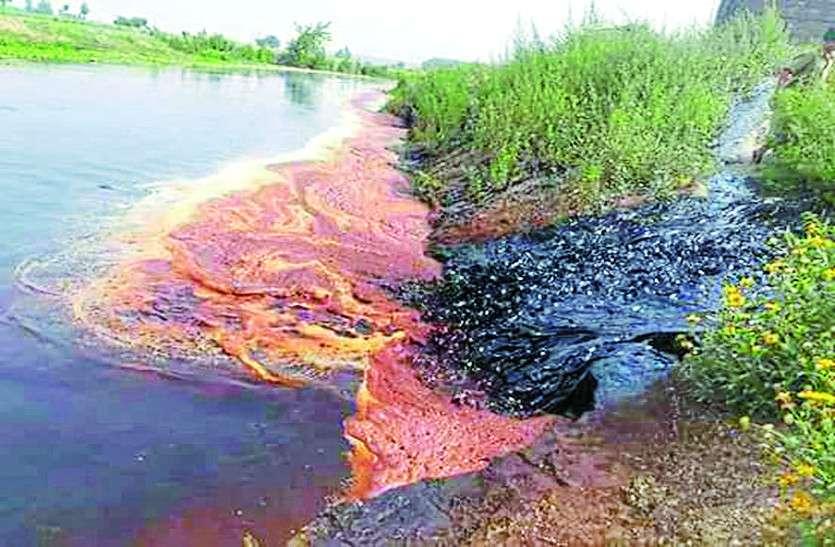 व्यास नदी में डाले गए केमिकल से जीव-जंतु मरे