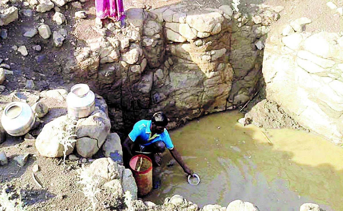 पाताल पहुंचा पानी: मवेशियों का हक छीनकर बुझानी पड़ रही प्यास