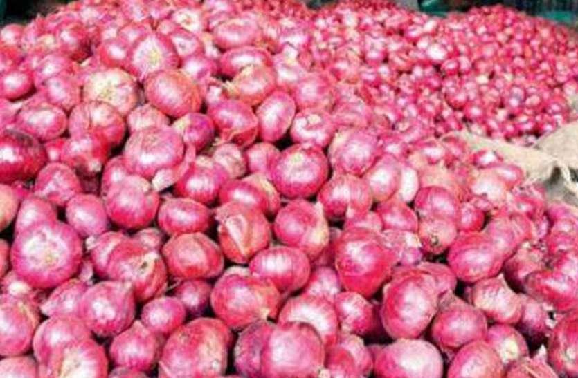चिकबल्लापुर में 'बेंगलूरु गुलाबी' प्याज का बंपर उत्पादन