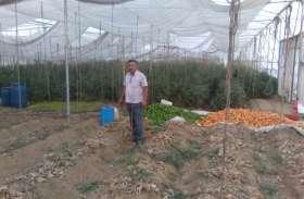 जानिए शासन से लिया क्या लाभ, नई तकनीकी से शुरू की खेती, कर रहे मोटी कमाई