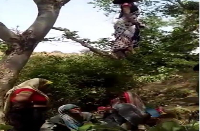 पेड़ पर लटकता मिला महिला का शव, पुलिस कर रही जांच