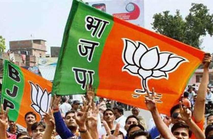हर एक विधानसभा से निकलेगी भाजपा की विकास यात्रा