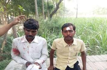 गांजरी कस्बे में तेंदुए ने दी दस्तक, हमले में 2 किसान हुए घायल