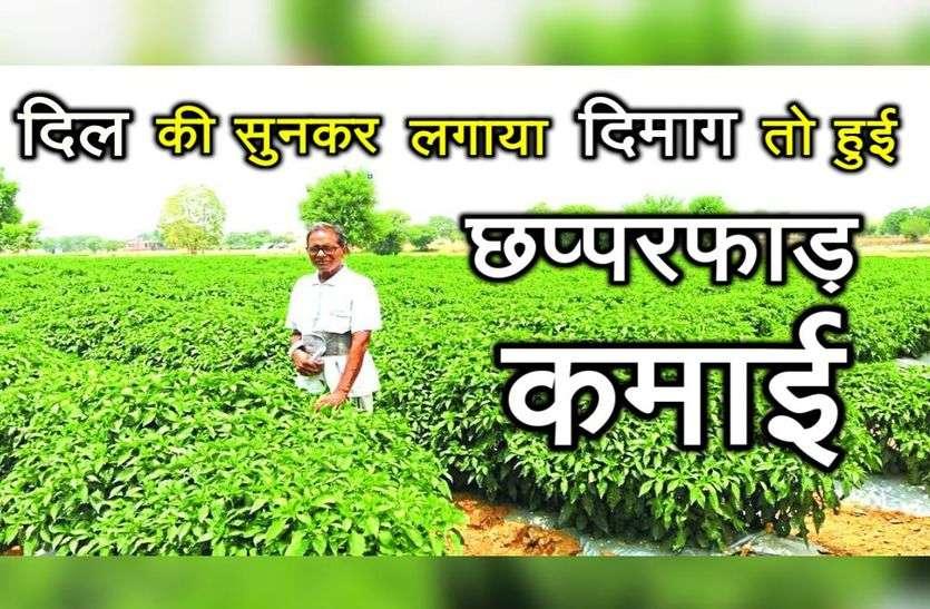 SIkar Farmer Jhabar Singh Success story - Sikar News in Hindi