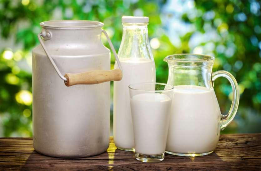 MPके इस शहर में रोजाना हो रही 8 लाख लीटर दूध की खपत, जानिए किस पशु के मिल्क की है डिमांड