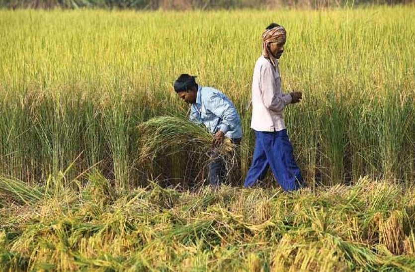 किसान बदल रहे खेती का तरीका