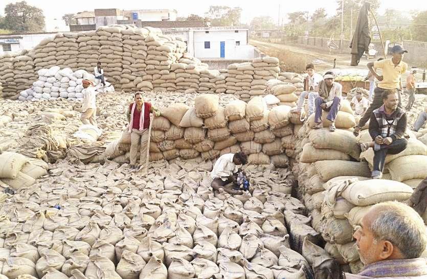 बारिश में हजारों क्विंटल चावल के भीगने की आशंका, गोदामों में पन्ना से लाकर गेहूं का भंडारण, चावल रखने जगह नहीं