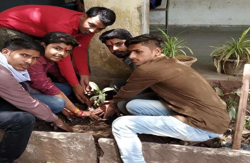 छात्रों ने पौधे रोपकर दिया हरियाली का संदेश